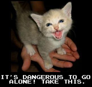 """You've recieved """"Kitten!"""""""