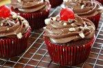 Chocolate Cherry Malt Cupcakes